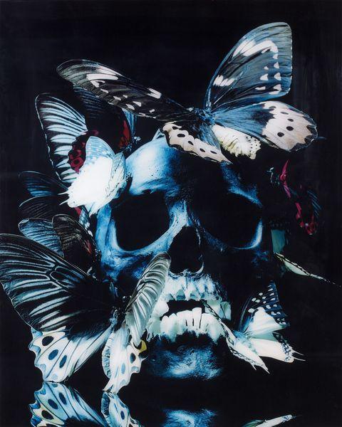 philippe-pasqua-vanitc3a9-papillons-2007